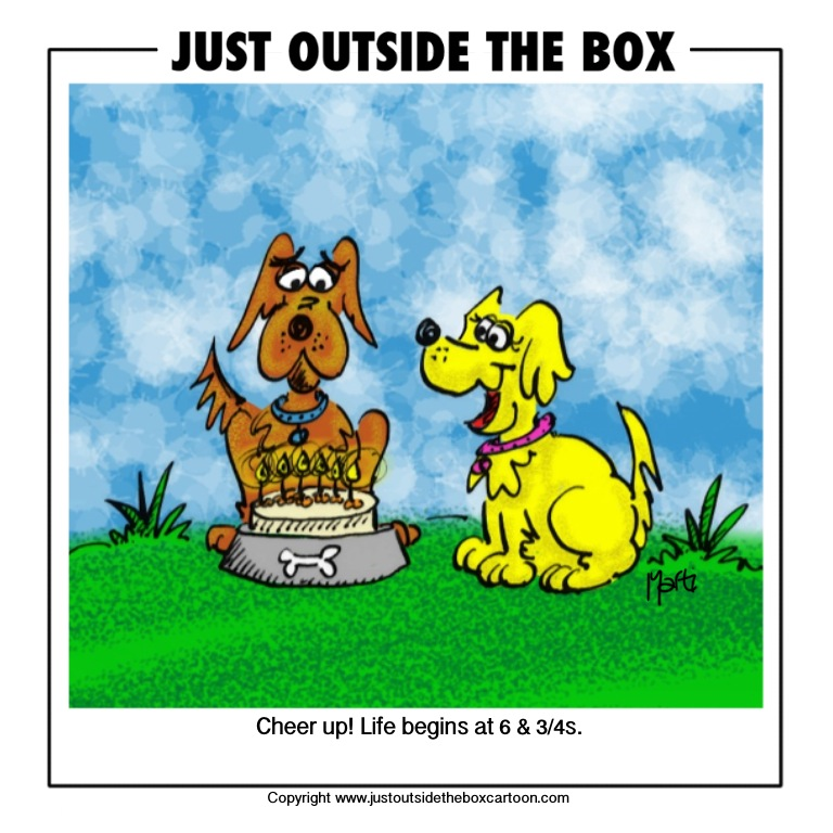 Funny Cartoons About Life: Just Outside The Box Cartoon