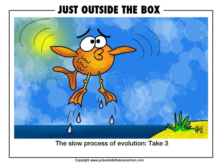 STVARANJE ILI EVOLUCIJA - Page 4 319-fish-evolution-take-3-b