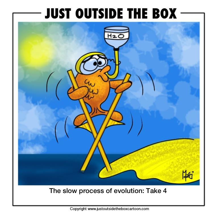 STVARANJE ILI EVOLUCIJA - Page 4 320-fish-evolution-take-4