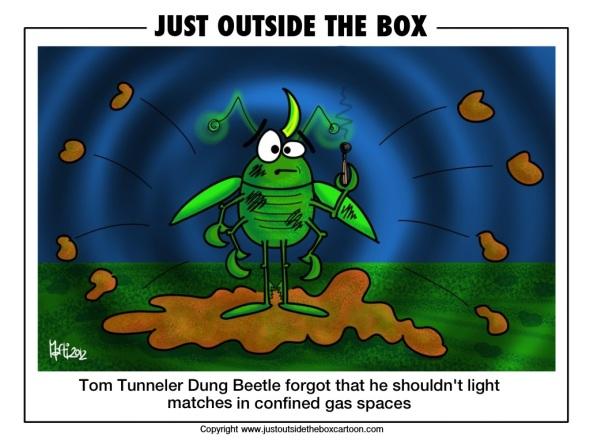 Doug dung beetle's tunneller cousin