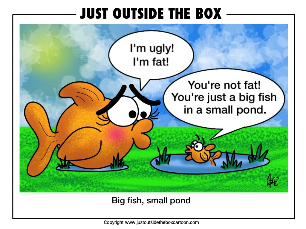 Big fish small pond just outside the box cartoon for Big fish little pond