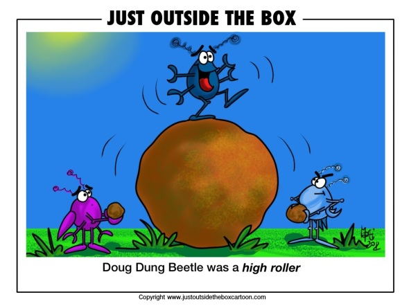 roller dung beetle