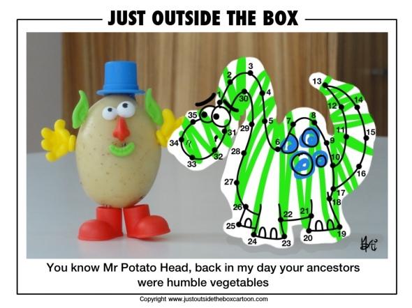 The wonders of evolution
