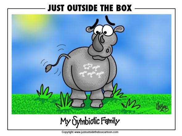 rhino and his bird family