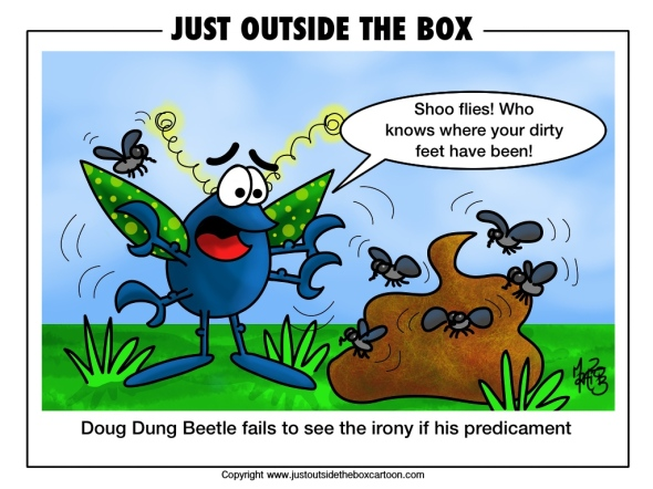 Flies on dung
