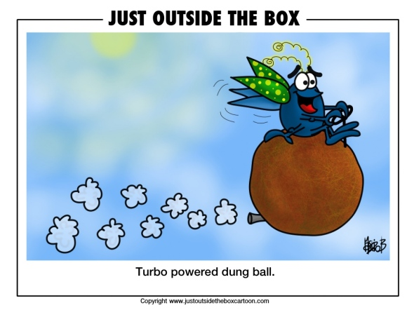 Doug dung beetle takes to the air