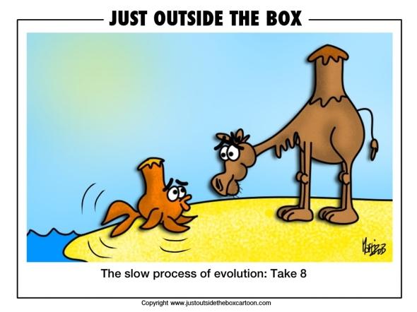 Fish and Darwin's natural selection