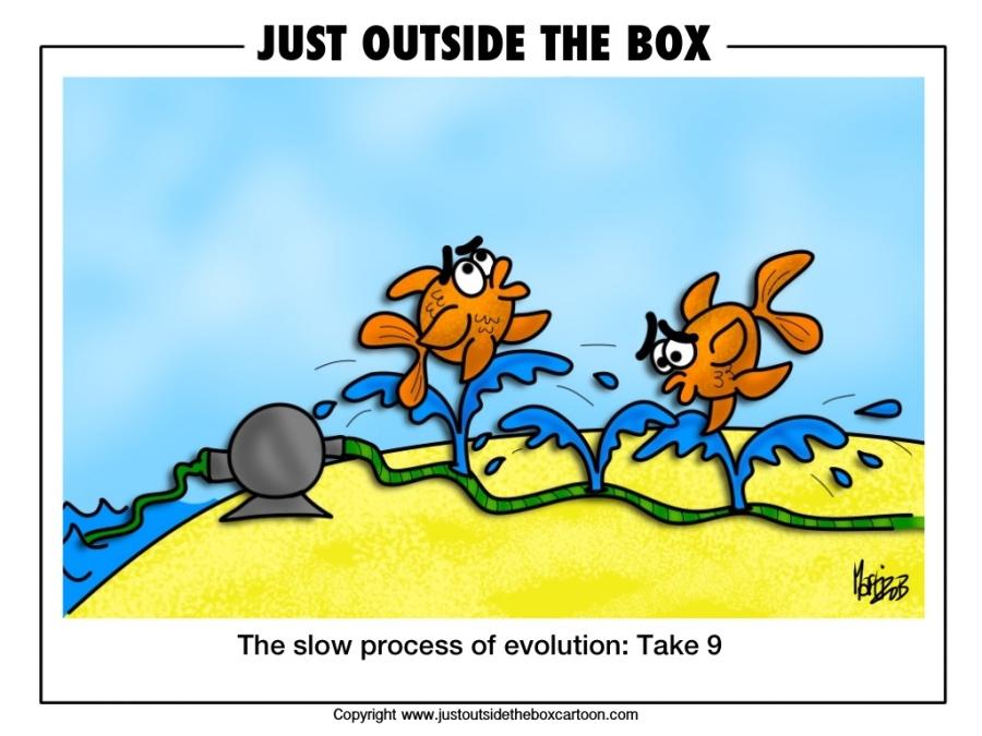 STVARANJE ILI EVOLUCIJA - Page 4 Img_2646