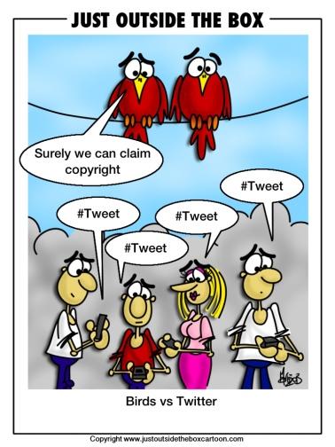 Angry birds claim copyright