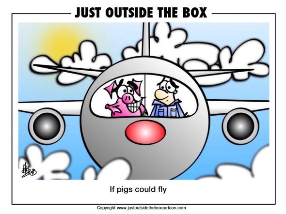 Flying pig pilot