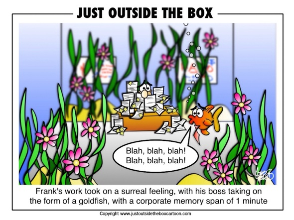 Goldfish short memory