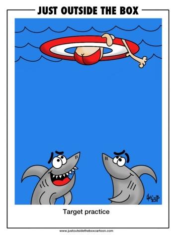 2013 Piracicaba international humor cartoon contest entry